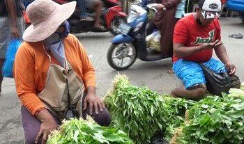 Harga Berbagai Jenis Sayuran, Variatif Di Pasar Tradisional Mardika